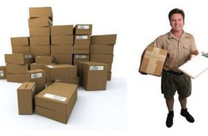 Need for Your Courier Service Business