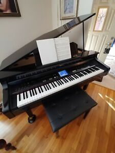 digital piano and acoustic