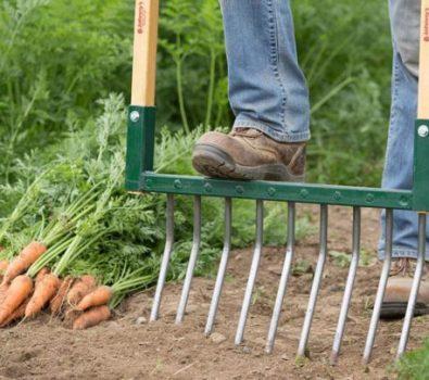 Enriching Soil Without Hidden Harm