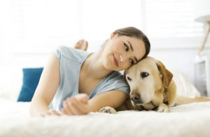 Know about perfect house sitters and get rid of your worries