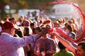 Significance of music festivals