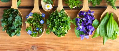 Essential Information You Need To Know About Naturopathy