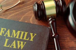 Understanding the Cases Which a Family Lawyer Can Handle