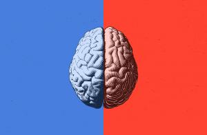 brain health assessment type 8